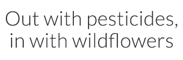 Sustainable agriculture - Out with pesticides, in with wildflowers