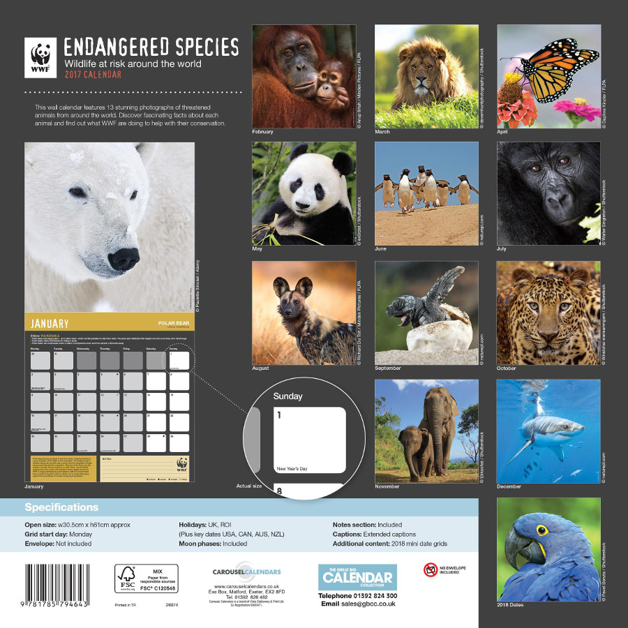 Wwf calendar 2017 wwf ethical superstore for Endangered fish species