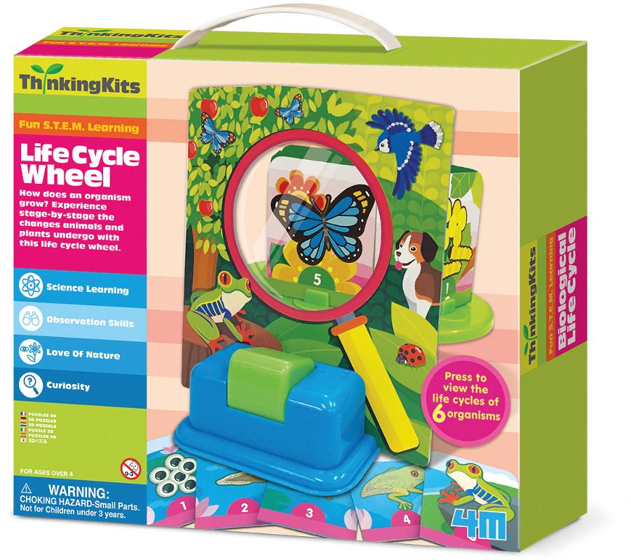 Image of 4M Thinking Kits - Life Cycle Wheel