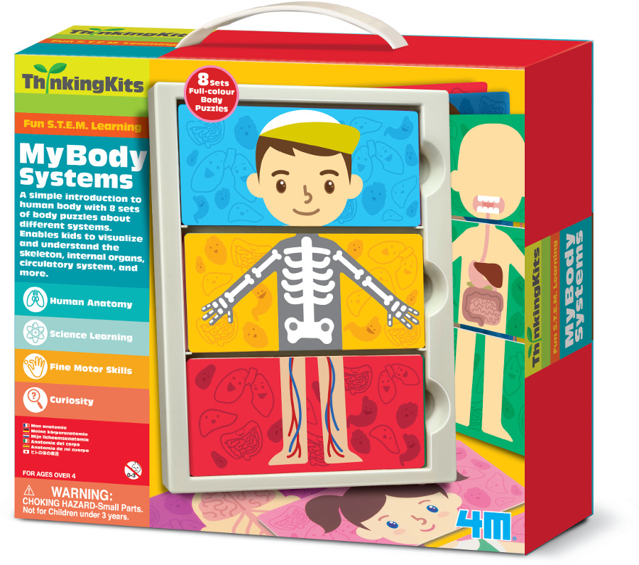 Image of 4M Thinking Kits - My Body Systems
