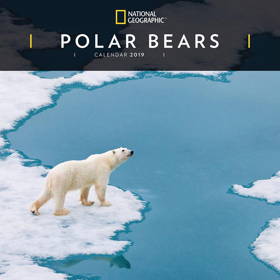 National Geographic Polar Bears 2019 Wall Calendar