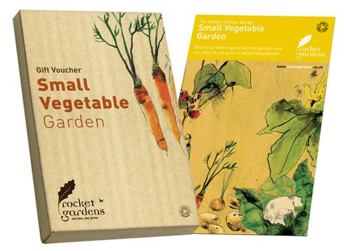 Instant Organic Garden : Instant small vegetable garden rocket gardens