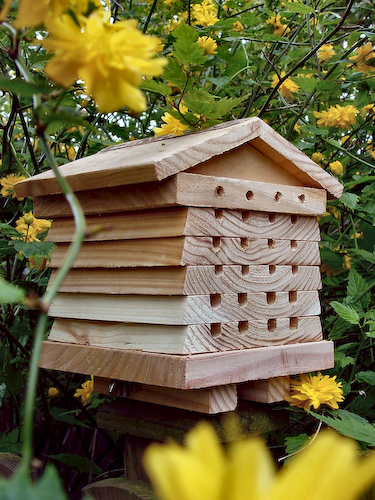 Wildlife world solitary bee hive wildlife world for Hive homes
