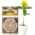 ECO Seedcell - Sunflower