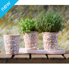 Bird & Bramble Herb Pots - Set of 3