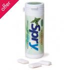 Spry Gum & Mints Spearmint Gum With Xylitol - 30 Pcs