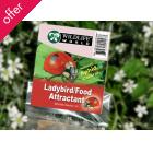 Ladybird Food Attractant