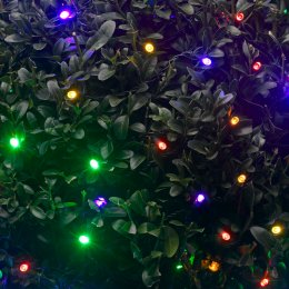 Solar Powered Coloured LED String Lights - 50