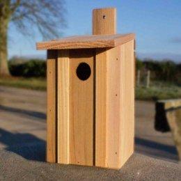 Eco Nest Bird Box