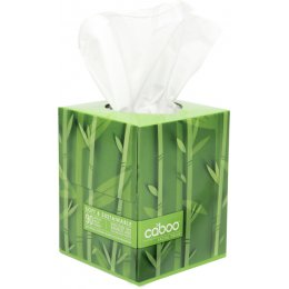 Caboo Bamboo & Sugarcane 2ply Facial Tissues - Box of 90