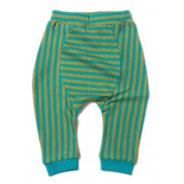 Peacock Stripe Jelly Bean Joggers