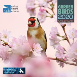 RSPB British Garden Birds 2020 Wall Calendar