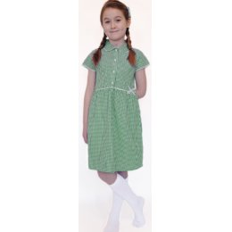 Organic Cotton Green Gingham Dress - 8yrs Plus