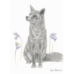 RSPB Bluebell Fox Charity Card