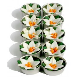 Waterlily Tealights - Set of 10