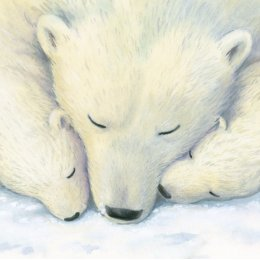 Snooze Charity Christmas Cards - Pack of 8