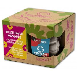 Kabloom Seedbomb Gift Set of 4 - Wildflower Wonders