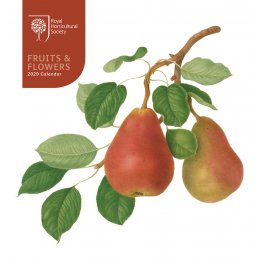 RHS Fruits & Flowers 2020 Desk Calendar