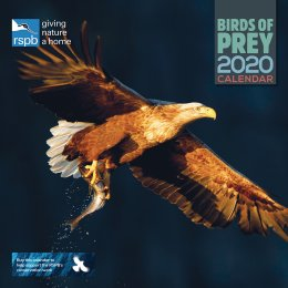 RSPB Birds of Prey 2020 Wall Calendar