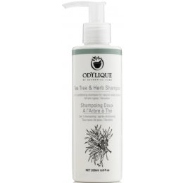Odylique Tea Tree & Herb Shampoo - 200ml