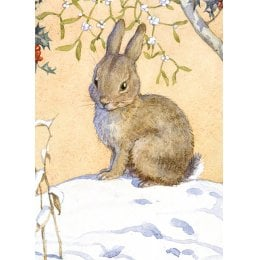 Bunny Charity Christmas Cards - Pack of 8