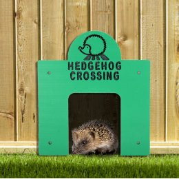 Square Hedgehog Crossing