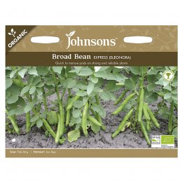Johnsons Organic Broad Bean Seeds - Eleonora