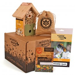 For the Love of Bees Gift Pack