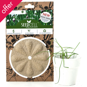 ECO Seedcell - Chives