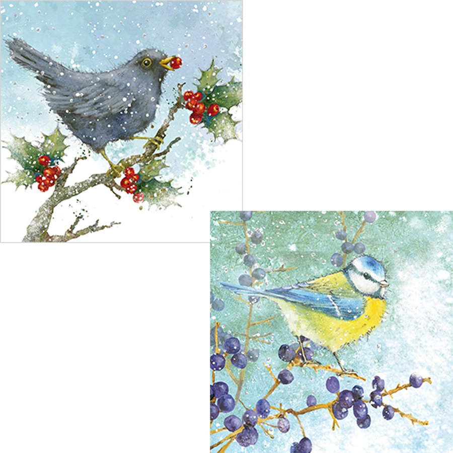 RSPB Berries and Birds Christmas Cards - RSPB