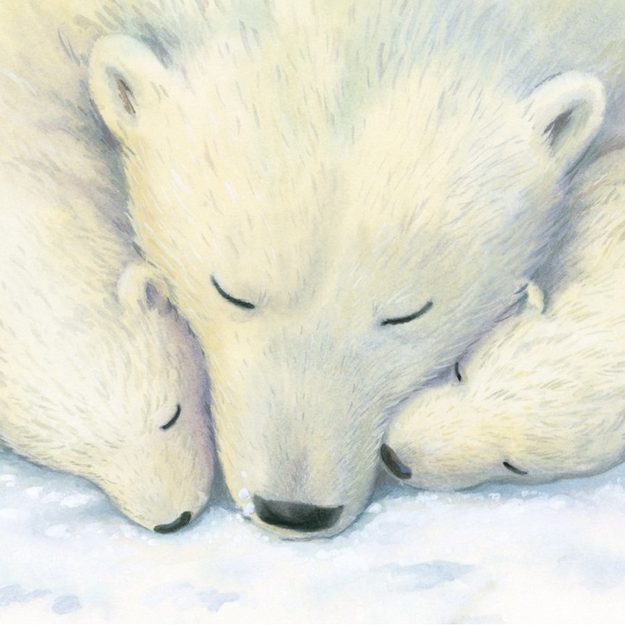 Snooze Charity Christmas Cards - Pack of 8 - Natural Collection Select