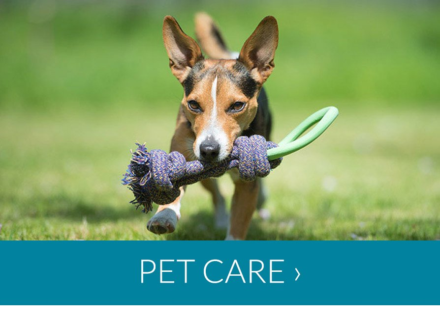 Special Offers in Pet Care
